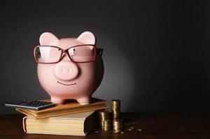 Piggy bank with glasses | Varay, El Paso