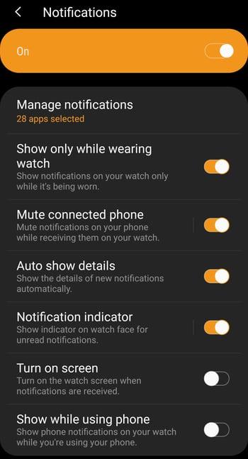 Notifications Screen - Galaxy Wearable App