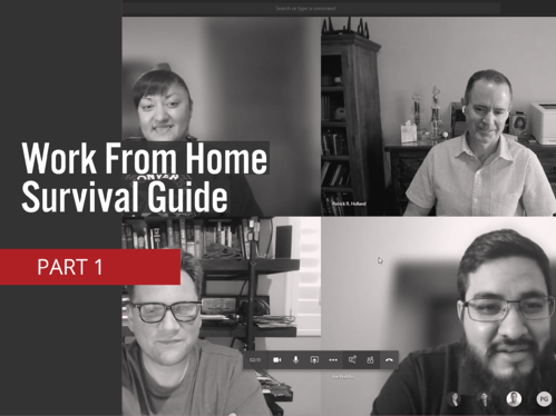 Work From Home Survival Guide V2 4_3
